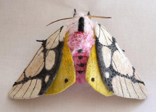 Yumi Okita moth 2