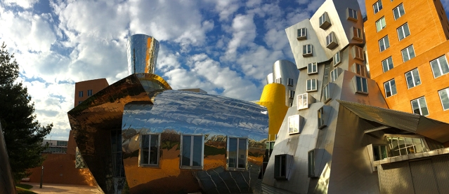Gehry O Rama MIT