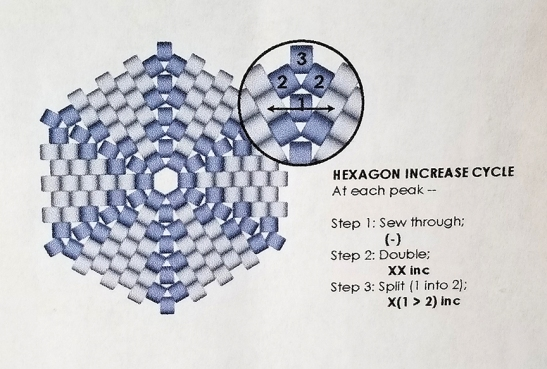 Julia Pretl Hexagon increase
