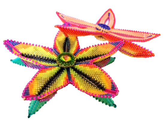 This image has an empty alt attribute; its file name is alex-nadin-flowers-web-1.png